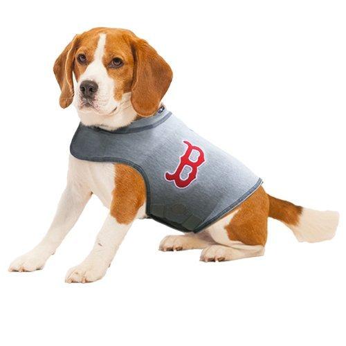 Best Dog Pressure Wrap